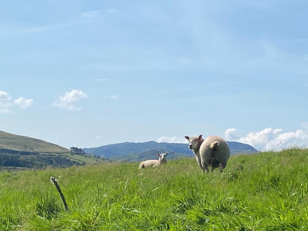 Cumbria scenery