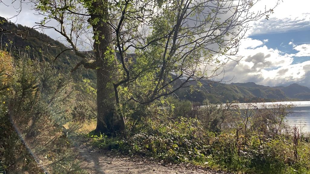 cumbria cliff view